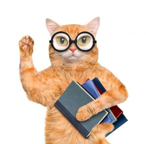 a cat in glasses holding a stack of books. It is doing research on cbd oil for cats