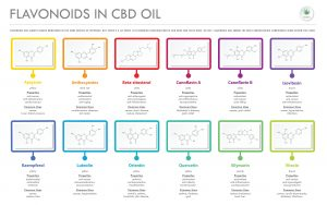 a chart of all the different flavonoid compounds found in CBD oil