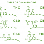 molecular compounds of the main cannabinoids