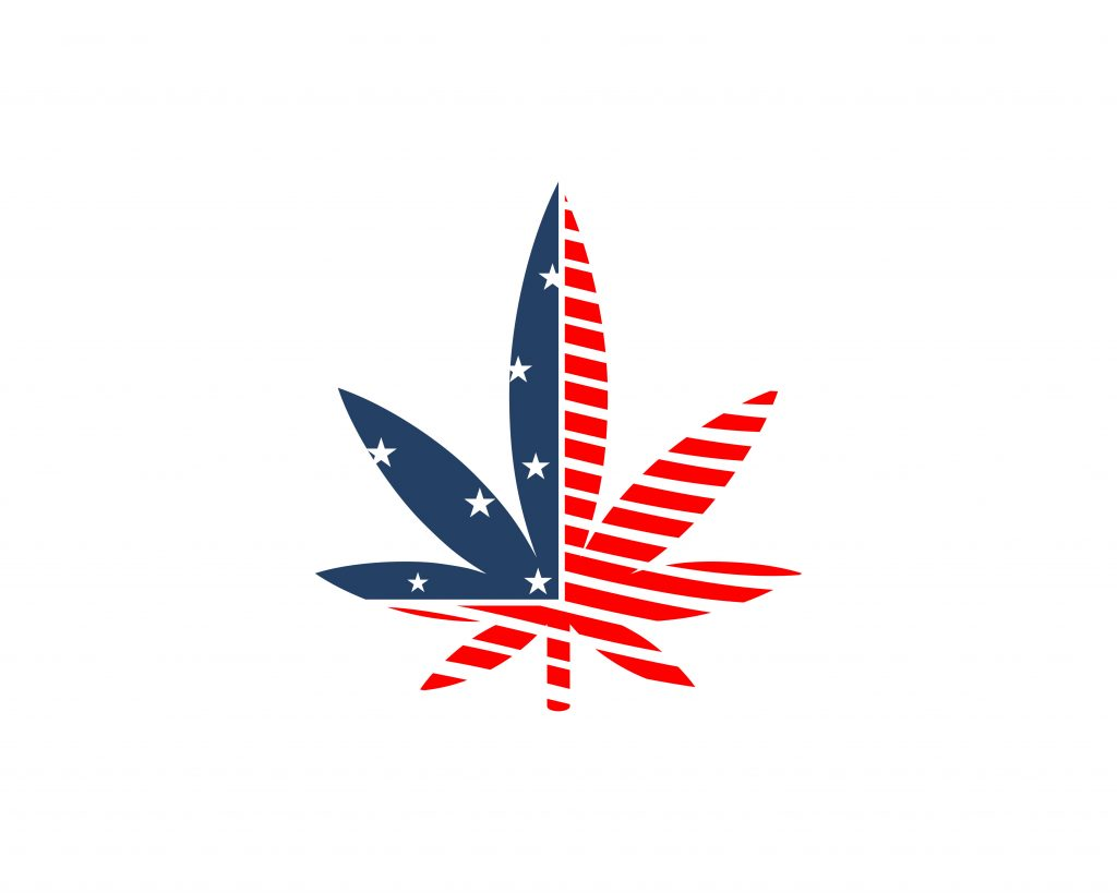 a hemp leaf with the american flag inlaid