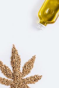 hemp seeds in the shape of a hemp plant next to a bottle of hemp seed oil on a white background